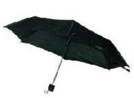 2-Fold Umbrella