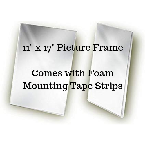"""11"""" x 17"""" acrylic picture frame"""